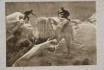Kyrgyzstan. Tian Shan Mountains. Alpinism  - Old USSR Postcard 1956 - Mountaineering - Kyrgyzstan