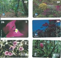 6 Télécartes Brésil Brazil  Fleur Flower Fleurs (D 501) - Brésil