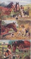 3 Cartes Postales Anciennes De L'illustrateur Raphael Tuck   Chiens Et Chevaux - Tuck, Raphael