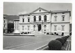 VITTORIO VENETO - PALAZZO MUNICIPALE   - NV  FG - Treviso