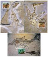 3 Maximumkarten 2010 Saurier / Dinosaures Carnivores / Ptérosaures / Ichthyosaures - Maximum Cards