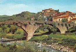 Cartolina Lunigiana Pontremoli Ponte Sul T. Verde E Castello Del Piagnaro - Massa
