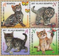 Belarus, 2017, Kittens, 4  Stamps Cats - Belarus