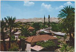ISRAEL,TEL AVIV,judaica,JERICHO,jourdain Ouest,cisjordanie,palestine,ville Des Palmiers - Israele
