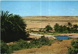 Western Sahara Occidental Español Spanish Sahara AAIUN Oasis Del Messeid Posted With Stamps 1972 - Western Sahara