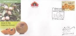 India  2018  Fruits  Chikoo  Sapodilla  Sapota  Pune  Cover   #  09431     D Inde Indien - Fruits