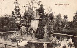 Wavre Notre Dame - Etang Aux Cygnes - Sint-Katelijne-Waver