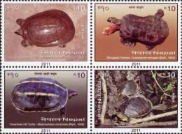 Nepal 2011 Turtles Block Of 4v MNH - Schildkröten