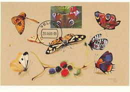D33122 CARTE MAXIMUM CARD FD 2003 NETHERLANDS - BUTTERFLY AGLAIS IO CP ORIGINAL - Butterflies
