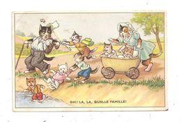 Chats Humanisés -(C.4096) - Animali Abbigliati