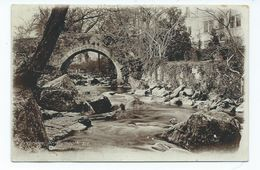 Plymouth Postcard Ivybridge Nr Plymouth Rp J.welch And Sons Photographers Unused - Other