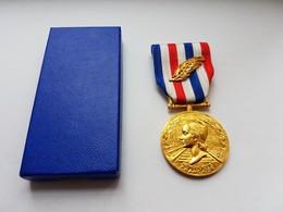 Très Belle Médaille D'honneur Des Chemins De Fer Avec Palme - Francia