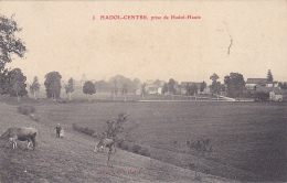 Hadol Centre - Prise De Hadol-Haute (petite Animation, Vaches Au Pré) Circulé 1908 - Autres Communes
