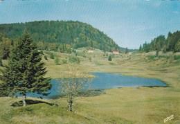 Col Des Feignes Sous Vologne - Centre Militaire VI° Région Ski Et Montagne - France