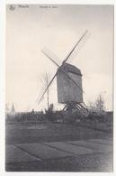 Roeulx:  Moulin à Vent. - Le Roeulx