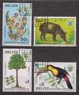 Indépendance Nationale - BELIZE - Flore, Faune, Armoiries - Tapir, Toucan -  N° 562 à 565 - 1981 - Belize (1973-...)