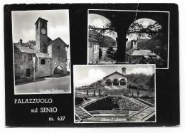 PALAZZUOLO SUL SENIO - VEDUTE - VIAGGIATA FG - Firenze