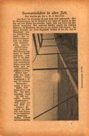 Seemansleben In Alter Zeit /Artikel,entnommen Aus Zeitschrift /Datum Unbekannt - Books, Magazines, Comics