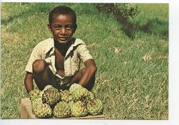 Ile De La Réunion : Petit Vendeur De Zattes (métier Fruit) - Saint Benoît