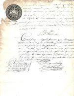 C) ECUADOR, SELLO DE LA REPUBLICA DE ECUADOR AÑO 1877 - 1878 - Stamps