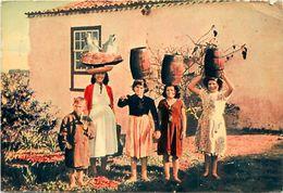 Ref W39 - Espagne -espana - Spain - Christophe Colomb - Escale Aux Canaries    -/ Format :15cms X 10,5cms - - Espagne