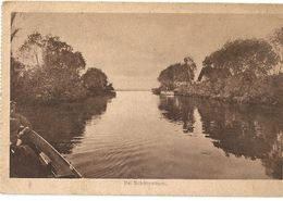 H 1002 BEI SCHITNOWITSCHI - Belarus