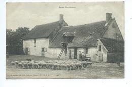Ferme Berrichonne - Aufrère, Levroux - Chateauroux