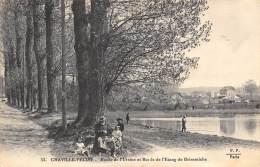 HAUTS DE SEINE  92   CHAVILLE - VELIZY  ROUTE DE L'URSINE ET BORDS DE L'ETANG DE BRISEMICHE - Chaville