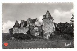 21319-LE-49-BLAISON-Le Château - France