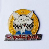 Pin's Guide Magazine Le Petit Futé Renard - 40R - Pins