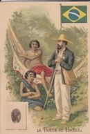 RARE---CHROMO--PUB  MOKA LEROUX--chicorées--la Poste Au Bresil-- Voir 2 Scans - Thé & Café