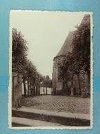 CPSM Lessines Parvis De L'Eglise Saint-Pierre, Côté Est Choeur De 1356 - Lessines