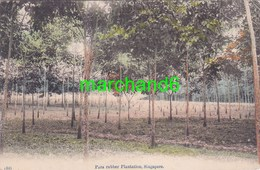 Asie Singapore Para Rubber Plantation Singapour Made In Japan 1910 - Singapour