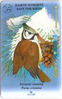 Bulgaria - Parus Cristatus Song Birds, 39BULJ, 07-1996, 30.000ex, Used - Bulgaria