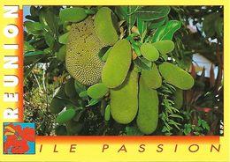 La Réunion Fruits De La Réunion (2 Scans) - La Réunion