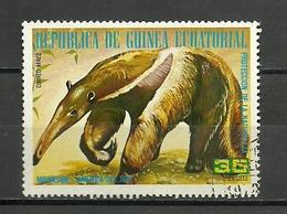 GUINEA AÑOS 70 - Roedores