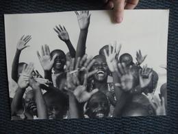 PHOTO Mat Glacée - Afrique Noire - Le Coucou Souriant Des Africains - Bonheur à L'état Pur -  40 Cm X 26,2 Cm - Afrique
