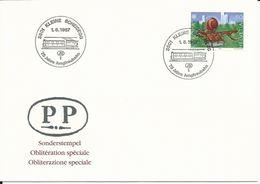 748, EUROPA, Fontaine Carnaval Bâle, Tinguely, Obl. Spéciale Kleine Scheidegg 1.8.1987 - Storia Postale