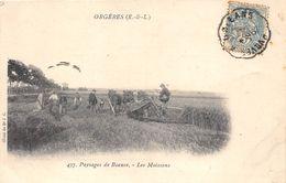 28-ORGERES- PAYSAGES DE BEAUCE - LES MOISSONS - France