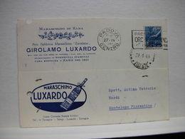 TORREGLIA  -- PADOVA     -- VINO -UVA - DISTILLERIA  --ACCESSORI --   GIROLAMO LUXARDO -- MARASCHINO DI ZARA - Padova (Padua)