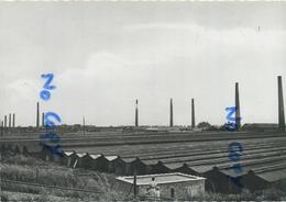 NIEL : Steenbakkerijen  (  Groot Formaat 15 X 10.5  Cm ) - Niel