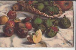 70539- CARLO CHIOSTRI- STILL LIFE WITH FRUITS, SIGNED ILLUSTRATION - Chiostri, Carlo