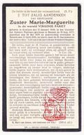 DP EZ Virginie Paret - Zr. Soeur Marie Marguerite ° Geluwe Wervik 1848 † Menen Menin 1930 - Devotion Images