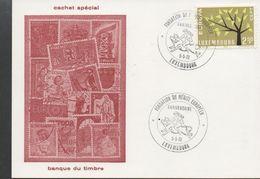 3267  Tarjeta Luxembourg 1973, Fondation Du Merite Europeen, - Luxembourg