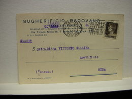 PADOVA  -- VINO - UVA - DISTILLERIA  -- ACCESSORI --- SUGHERIFICIO   PADOVANO - Padova (Padua)