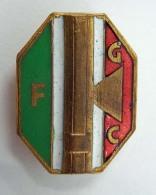 Vecchia Spilla Distintivo FGC Fasci Giovanili Di Combattimento Fascio Fascismo Old Pin  Fascista - Militari