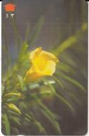 OMAN(GPT) - Flower, Yellow Oleander, CN : 33OMNM/B, 07/97, Used - Oman