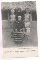 37746  -  WIves  Of  A  Native Chief - Sierra  Leone -  Femme Seins  Nus - Sierra Leone