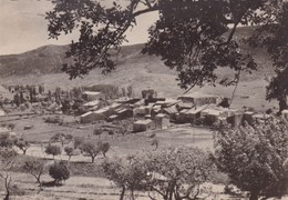 LA PALUD SUR LA ROUTE DES GORGES DU VERDON (dil352) - Altri Comuni