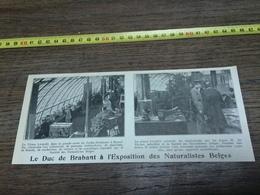 AN 20/30 DUC DE BRABANT A L EXPOSITION DES NATURALISTES BELGES - Vieux Papiers